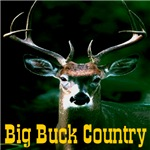 Big Buck Country