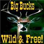 Big Bucks Wild & Free