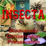 INSECTA Biodiversity, Conservation, Preservation