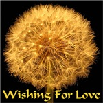 Wishing For Love