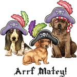 Pirate Pups