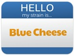 Hello My Strain Is: Blue Cheese
