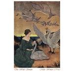 Winter's Wild Swans