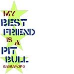 MBF Pit Bull