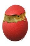 Dodgeball Chick