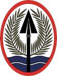 Multi National Force Iraq