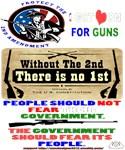 2nd-Amendment Section 8