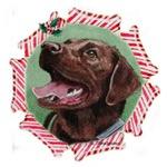 Chocolate Labrador Christmas