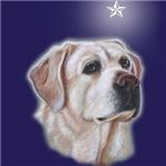 Christmas Star Yellow Labradors