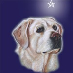 New Yellow Labrador Retriever  Design