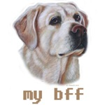 New Design, my bff Yellow Labrador Retriever