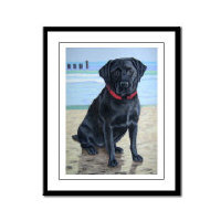 Framed Labrador Retriever Prints