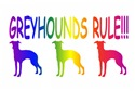 Greyhounds Rule