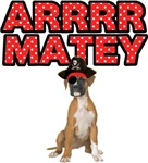 Pirate Boxer Dog