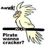 Pirate Wanna Cracker Cockatoo