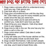 Why Dogs Are Better Than Cats T-Shirt