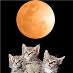 Three Kitten Moon T-Shirts