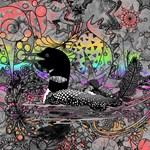 Wild Rainbow Loon
