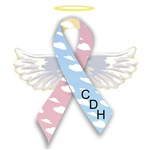 Winged CDH Awareness Ribbon