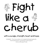 Fight Like A Cherub