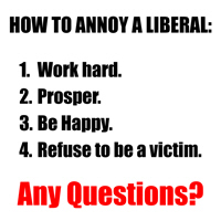 Annoy a Liberal!
