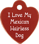 I Love My Mexican Hairless Dog