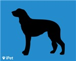 Scottish Deerhound iPet