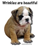 Wrinkles are Beautiful II Bulldog Puppy Design