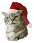 Christmas Kitty Painting T-shirts & Gifts