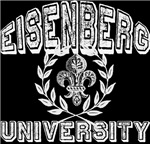 Eisenberg Last Name University T-shirts Gifts