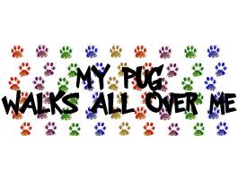 MY PUG WALKS ALL OVER ME