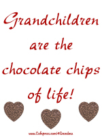 GRANDCHILDREN ARE THE CHOCOLATE CHIPS OF LIFE