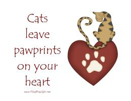 CATS LEAVE PAWPRINTS ON YOUR HEART