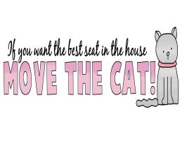 IF YOU WANT THE BEST SEAT...MOVE THE CAT