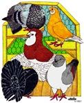 Five Pigeons #2