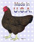 USA Rock Hen