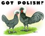 Got Polish?