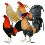 Four Gamecocks