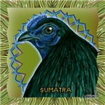 Framed Sumatra Rooster