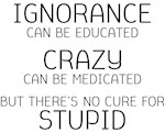 No Cure For Stupid Funny Saying
