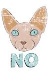 No Sphynx Cat