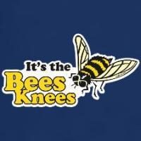 Bees Butterflies Bugs Collectibles