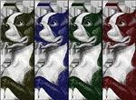 Boston Terrier Color Block