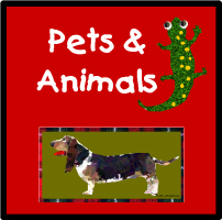 Pets & Other Animals