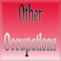 Other Occupations