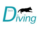 Dock Diving Dogs