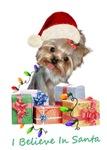 Yorkie Believes In Santa
