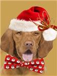 Vizsla Santa Christmas Card gold