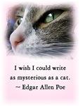 Famous Cats - Poe's Cat
