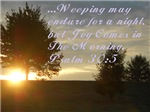 Joy N The Morning